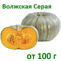 Посевной материал, семена тыквы Волжская серая 92, Сероволжская 100 г