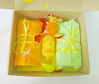 Подарочный набор для новорожденного MiniMe