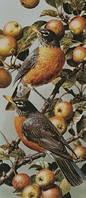 """Схема для вышивания """" Дрозды на яблоне """""""