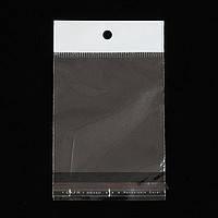 Пакеты полипропиленовые с клеевым клапаном и еврослотом 10х24 см (100) (уп.)
