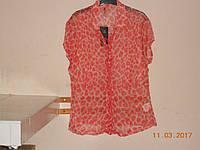 Цветная шифоновая блузка батал  Calio, фото 1