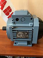 Электродвигатель M1AA80AB3 IE1 0,75 кВт 3000 об/мин