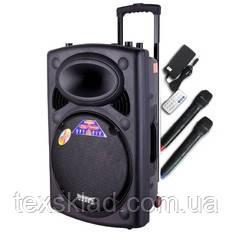 Портативная колонка 2305 Temeisheng с радиомикрофонами