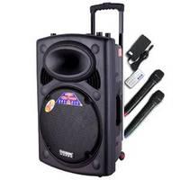Портативная колонка 2305 Temeisheng с радиомикрофонами, фото 1