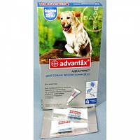 Капли от блох и клещей для собак Адвантикс больше 25кг. Байер.