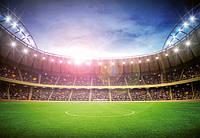 Фотообои бумажные на стену 366х254 см 8 листов: здание, Стадион