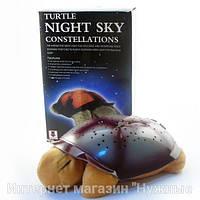 Черепаха ночник(коричневая), проектор звездного неба с музыкой