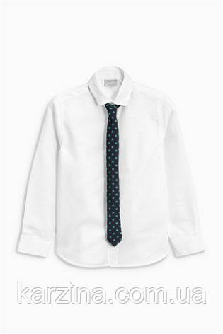 Рубашка с галстуком Next 12лет