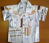 Рубашка-тениска летняя для маленького мальчика.
