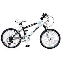 Велосипед 20 дюймовProfi  MOTION 20.1