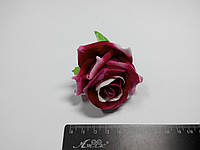 Роза темно розовая с белым