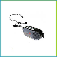Мегафон экскурсовода WAP-10R+HM38, фото 1
