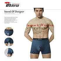 Мужские боксеры стрейчевые марка «INDENA» АРТ.65049, фото 2