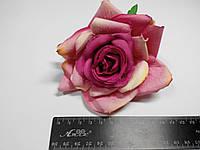 Роза розово малиновая