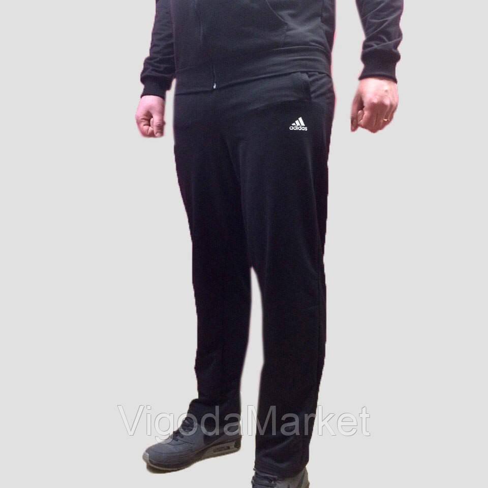 f226d007 Спортивные штаны Adidas: продажа, цена в Хмельницком. спортивные ...