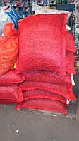 Цибулю севок озимий Ред Барон (20 кг) (Голландія)