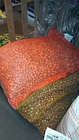 Лук севок озимый Саншай йелоу (10 кг.) (Голландия)