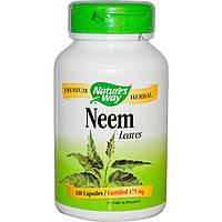 Nature's Way, Neem, Leaves, 100 капсул листья ним