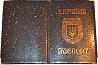 Обложка на паспорт Украины «Метеорит» цвет черный