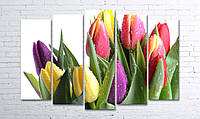 """Модульная картина на полотне """"Тюльпаны на белом"""""""