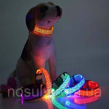 """Светящийся ошейник LED """"Леопард"""" для собак и кошек светодиодный. Ошейник с подсветкой."""