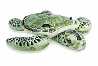 Черепаха 57555