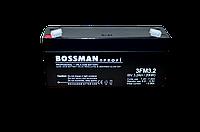Свинцово-кислотный аккумулятор 3FM3.2 (6V 3.2AH)