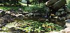Защитная сетка для прудов и водоемов Aquanova NET 4x5 , фото 3