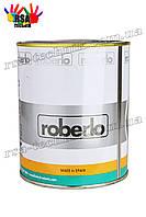 Краска для автомобильных дисков ROBERLO (Aluminio Ruedas) 1л