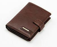 Портмоне кошелек Baellerry(Piroyce) 3073B_Br коричневый вертикальный