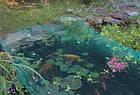 Защитная сетка для прудов и водоемов Aquanova NET 4x10, фото 3