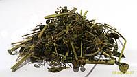 Паслен сладко-горький побеги 100 грамм (волчья ягода, гадючья ягода, глистник, медвежья ягода)