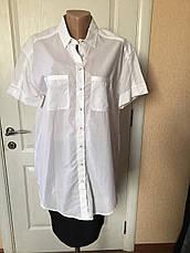 Рубашка женская   белая  короткий рукав Massimo Dutti , фото 3