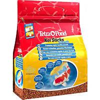 Tetra Pond Koi Color & Growth Sticks корм для интенсивного роста рыб в палочках, 4 л, фото 1