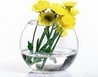 Ваза Flora Аквариум 100мм 1шт