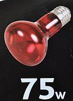 Инфракрасная лампа 75 Вт