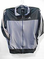 """Спортивный костюм мужской Adidas эластик Серии """" POWER """" размеры 48-56"""