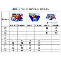 Плавки купальные детские Cars / Тачки - №2050
