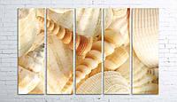 "Модульная картина на полотне ""Морские ракушки"""
