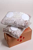 Мицелий вешенки зерновой (1 ящик - 12 кг.)