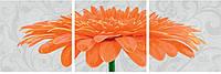 Триптих хризантема крупноцветковая оранжевая, 40х120 см  9400684
