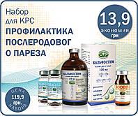 Набор для КРС «Профилактика послеродового пареза»