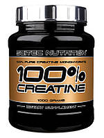 Scitec Nutrition 100% Pure Creatine Monohydrate 1000 г