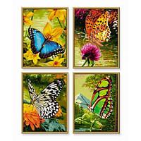 Набор для рисования по номерам Красочные бабочки Schipper 9340628
