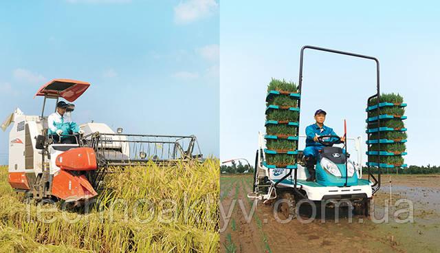 Зерноуборочный комбайн и пересаживатель для риса Наш надежный комбайн и пересадка риса доступны для поддержки как можно большего количества фермеров, производя еще одно дополнительное зерно риса.