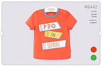 Летняя футболка для мальчика ФБ442