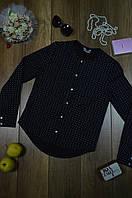 Женская рубашка жабо Elisabetta Franchi