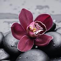 Орхидея 5Д (частичная выкладка) 30*30 см