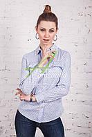 Модная весенняя женская блузка-рубашка весна 2017 - (код бл-77)