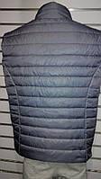 Безрукавка жилетка мужская без капюшона дутая разные цвета размер M, L, XL, XXL Турция